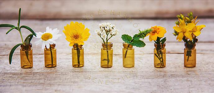 Aromaterápiás alapok